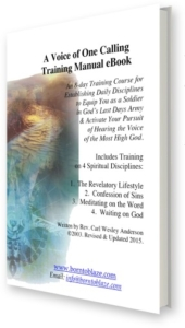 A Voice of One Calling eBook